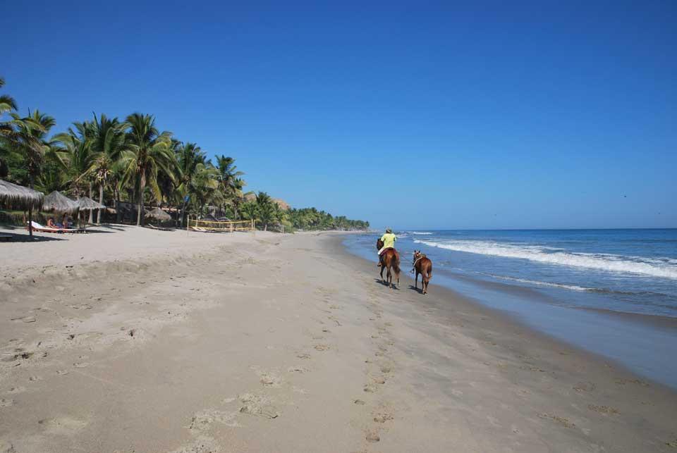 peru strand und pferde
