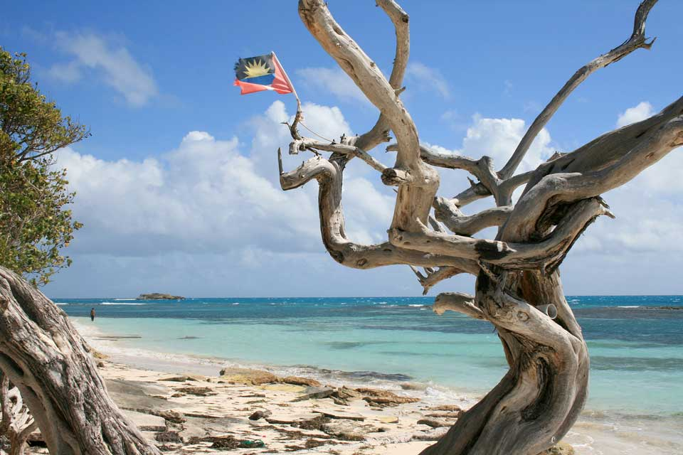 Karibik Jabberwock Beach