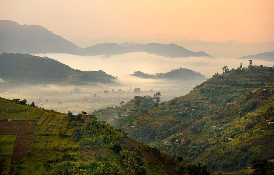 Reise nach Uganda Kisoro
