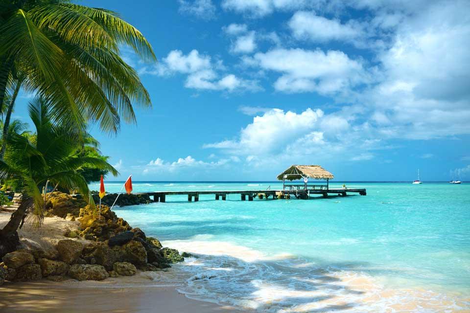 Karibik Tobago PigeonPoint